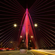Putrajaya Bridge — Stock Photo
