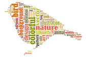 Colourful Bird Word Cloud — Photo