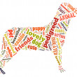 Colourful dog Word Cloud — Stock Photo #31382997