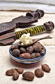 Shea nuts and butter in a spoon — Stock Photo