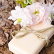 Bar of soap with apple flower — Stock Photo