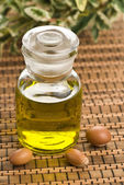 Argan oil and fruits — Stock Photo
