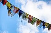 Buddhist flags against a blue sky — Stock Photo