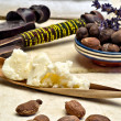 Still life of shea nuts and butter — Stock Photo
