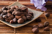Shea butter nuts — Stock Photo