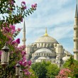 Istanbul, Saint Sofia — Stock Photo