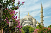 Istanbul, Saint Sofia — Stock Photo