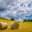Stock Photo: Hay Sheaf in field