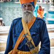 Portrait of unidentified Nihang (armed Sikh) — Stock Photo