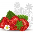 Stock Vector: Strawberry with flowers and leaves