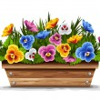 Wooden flower pot with pansies — Stock Vector #16785209
