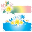 Stock Vector: Background with flower plumeria