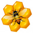 Royalty-Free Stock Vektorgrafik: Bee on a part of honeycomb