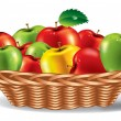 Colored apples in the basket. Vector illustration. — Stock Vector