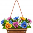 Wooden flower pot with pansies - Stock Vector