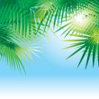 Background with leaves of palm trees — Stock Vector