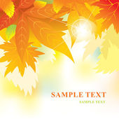 Soft vector background with autumn leaves — Stock Vector