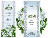 Two vertical banners with white lilacs — Stock Vector