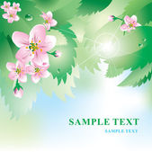 Soft vector background with spring flowers and leaves — Stock Vector