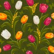 Tulips. Seamless background. - Stock Vector