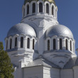 Alexander Nevsky Cathedral - Stock Photo
