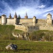 Medieval castle — Stock Photo #26618571
