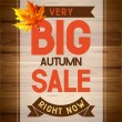 Autumn sale — Stock Vector #28125437