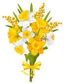 Narcisos y mimoses — Vector de stock