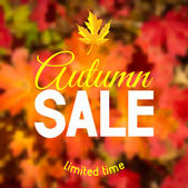 Autumn sale — Stockvektor