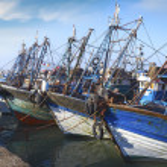 Blue fishing boats — Stock Photo