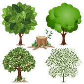 Insieme di alberi — Vettoriale Stock