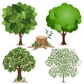 Set of trees — Stockvector