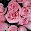 Pink roses — Stock Photo #18582107