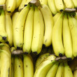 Bananas fruit — Stock Photo