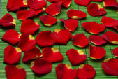 Rose petals on green mat — Stock Photo