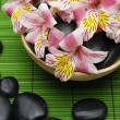 Pink orchid and zen stone — Stock Photo