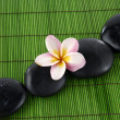 Frangipanis and zen stones — Stock Photo #22854428
