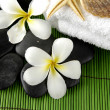 Frangipanis and zen stones — Stock Photo #22854458