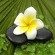 Frangipanis and zen stones — Stock Photo #22854896