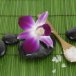 Stock Photo: Orchid with stones on green mat