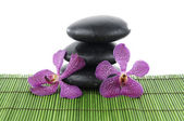 Orchid and zen stone — Stock Photo