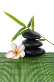 Frangipani and Balanced Zen stones — Stock Photo