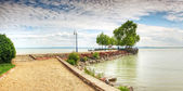 Pier with trees and stones — Stock Photo