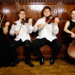 String quartet — Foto de stock #24012409