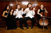 Quarteto de cordas — Foto Stock