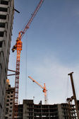 Construction site and working cranes — Stock Photo