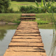 Stone path across pond — Stock Photo