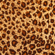 Texture of tiger fabric — 图库照片
