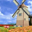 Windmill and flower garden — Stock Photo #34778667