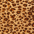 Tiger fabric — Stock Photo